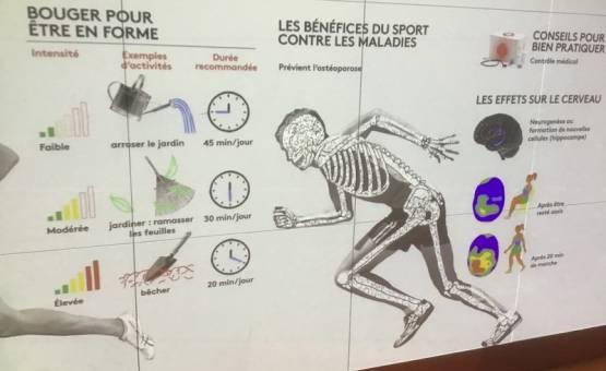 Cité des Sciences : corps et sport au programme !