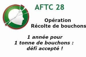 AFTC 28 : les CAP SAPVER s