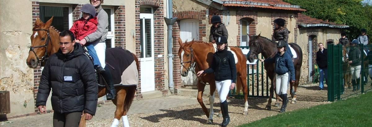 Hippologie/Equitation Une option pour chaque filière